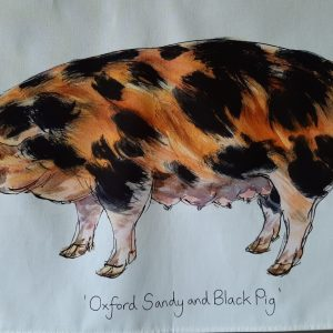 Oxford Sandy Black Pig Group Tea Towel