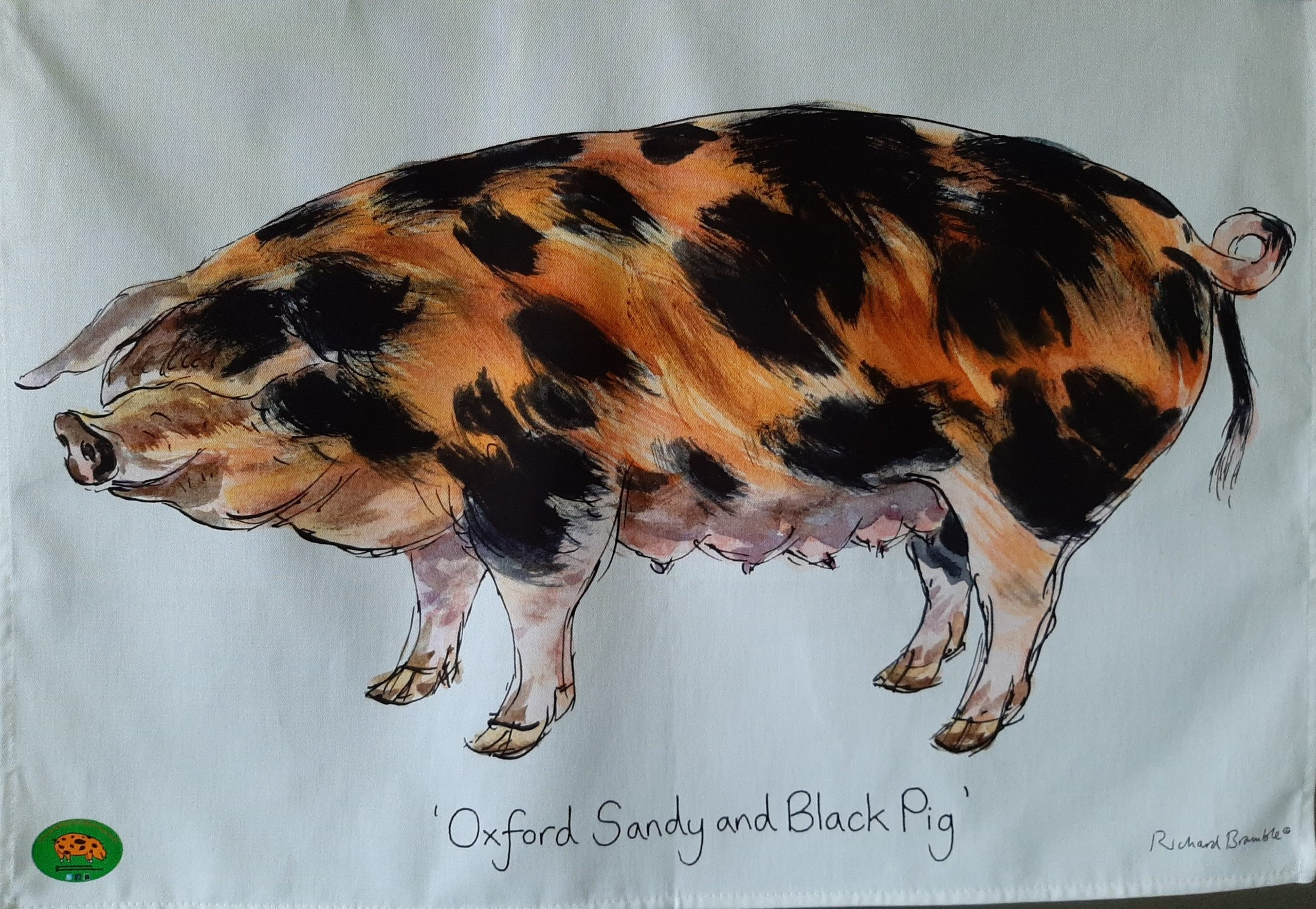 Oxford Sandy Black Pig Group Tea Towel