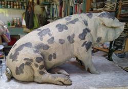 Pig Sculpture (14x9inches)